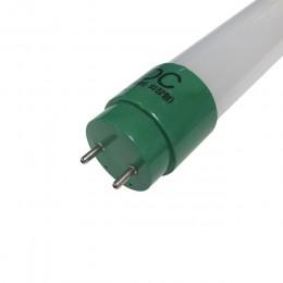 LED T8램프